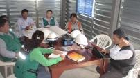 Planificación de proyectos con sistemas colectivos y de ingeniería